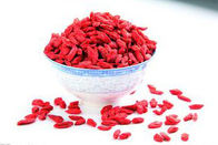 China Voedsel Snack droge Rode Mispel Goji bessen Wolfberry 480Grains / 50g SDG-R480 fabriek